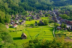 Historic Village of Shirakawa-go in summer