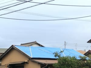 Many houses near Mr. N's home in Chiba city are covered with blue plastic sheets.