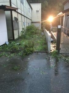 停電初日の夕闇が迫って来ました。暴風で飛ばされた屋根材や木の枝が至る所に散乱しています。灯りが点いていたのはNさん宅のみでした。Nさん撮影。
