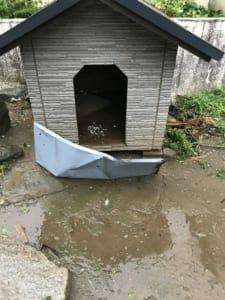 犬小屋の前には、近くの倉庫の屋根材がぶつかっている。Nさん撮影。